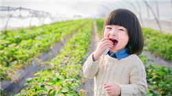 宝苞农场游玩套餐直降¥300 周末不涨价